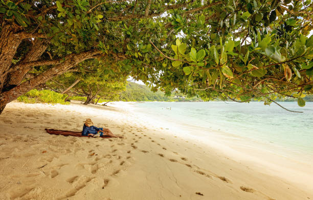 Man lying on the beach and reading book. stock photo