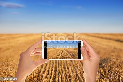 istock Man makes a photo of field after harvesting 1069196094