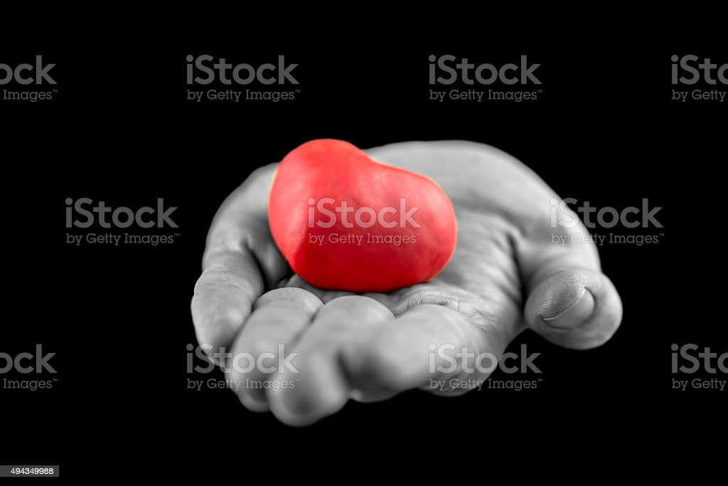 Man making the gift of Love stock photo