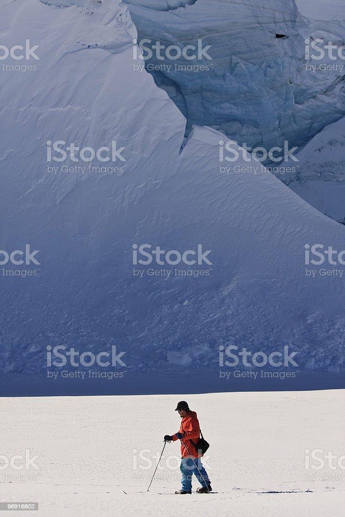 Man moves on skis royalty-free stock photo