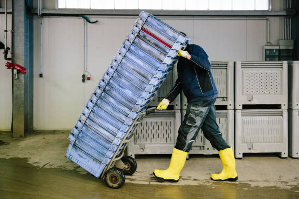 man moves stacks of boxes into a cold store stock photo