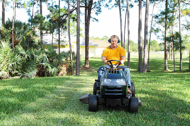 man mowing grass on riding mower - riding lawn mower stock photos and pictures