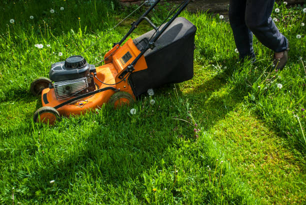 A man mowing grass with a mow in a farm yard A man mowing grass with a mow in a farm yard mowing stock pictures, royalty-free photos & images