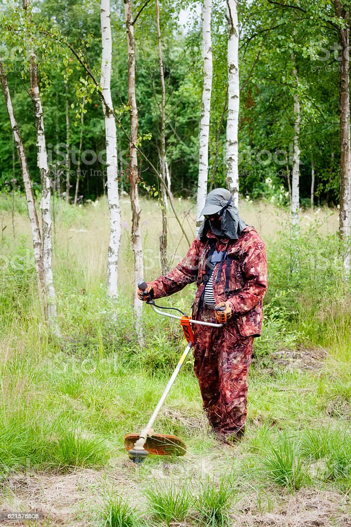 Man mowing grass with a trimmer photo libre de droits
