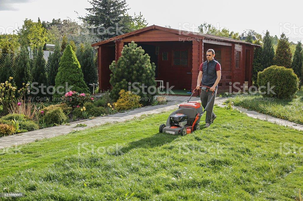 man mowing lawn in the backyard stock photo