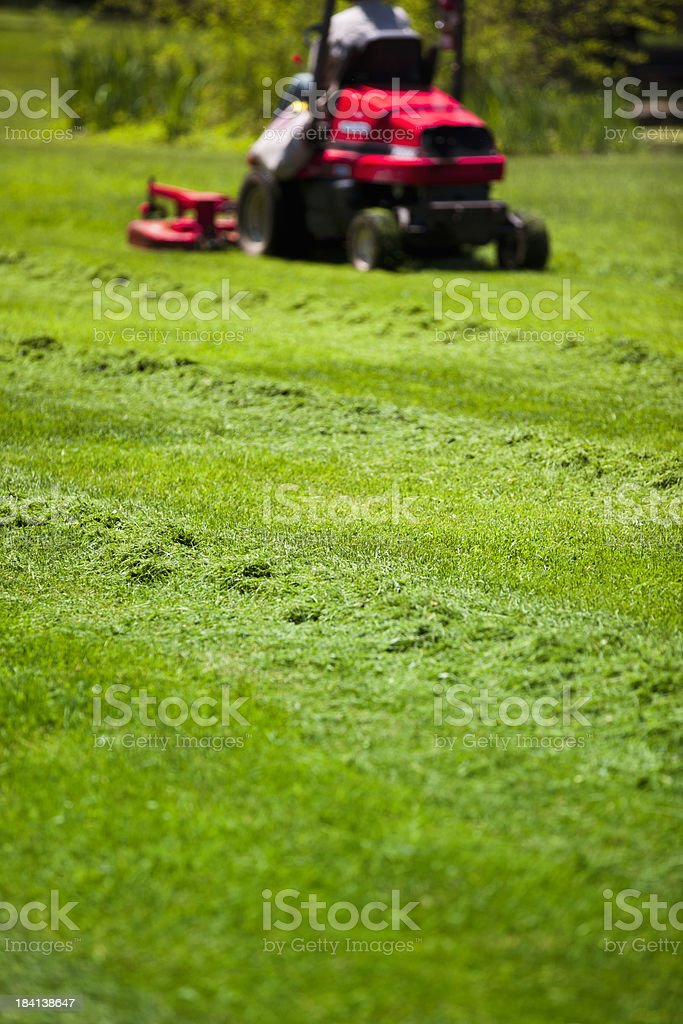 Man mowing lawn royalty-free stock photo