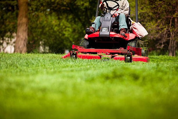 man mowing lawn - riding lawn mower stock photos and pictures