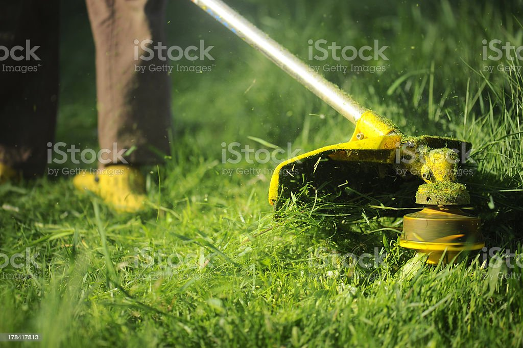 Man mowing the grass,  mower close up. stock photo