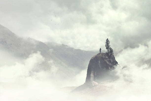 man of the top of the mountain in the fog - trees in mist stock pictures, royalty-free photos & images