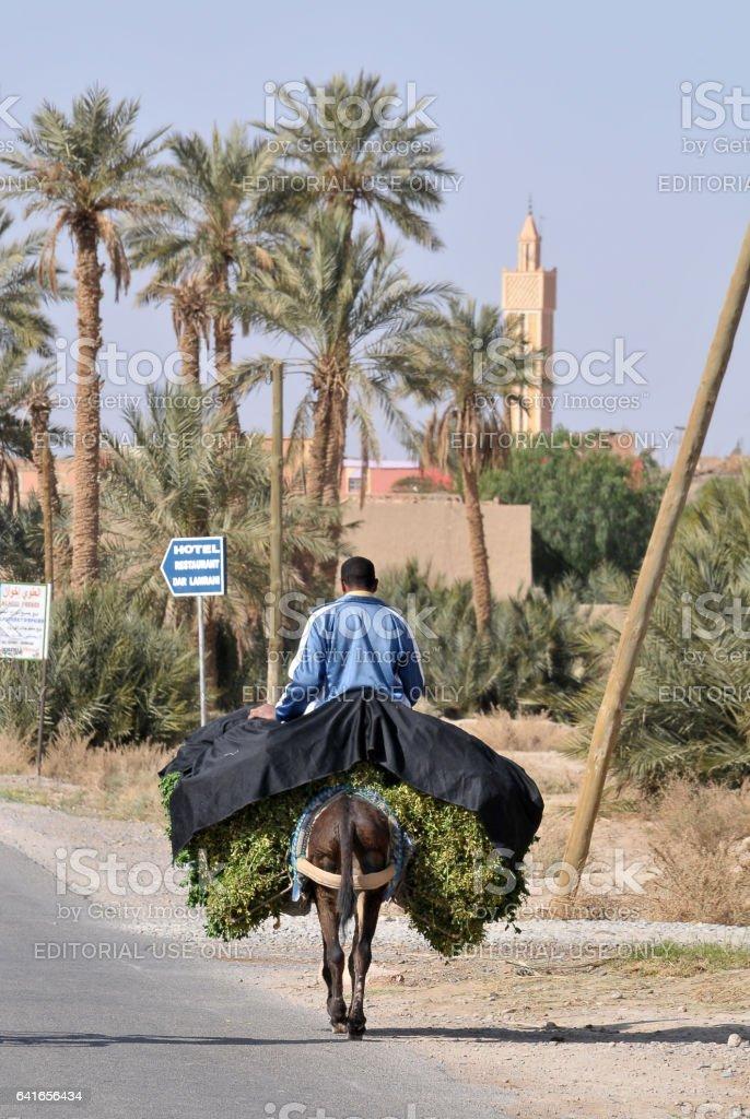 Hombre sobre un burro, en una carretera en Marruecos - foto de stock