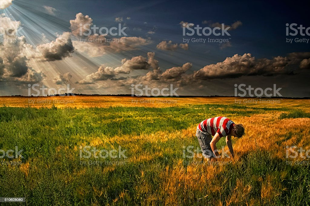 Man on a farm stock photo