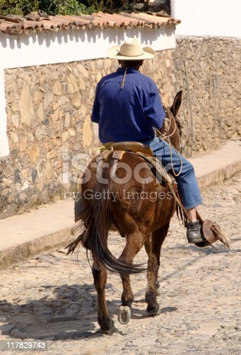 Man riding on a Mule in Mexican Village