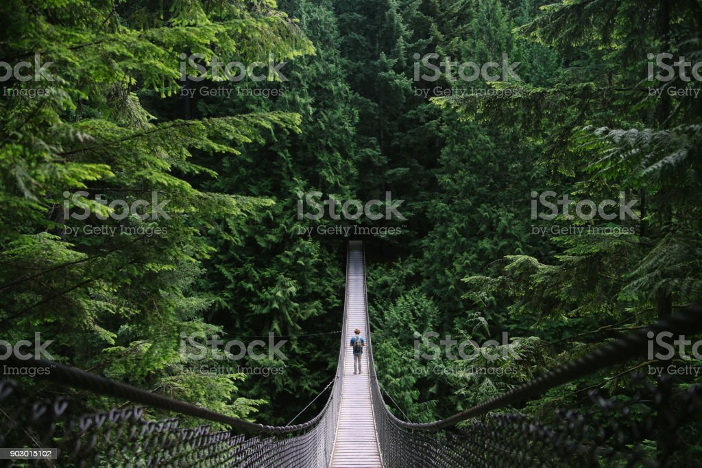 Man on an adventure exploring a lake and walking a suspension bridge stock photo