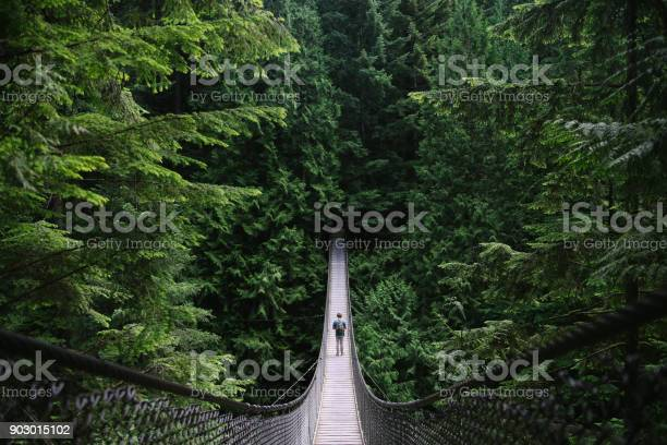 Man on an adventure exploring a lake and walking a suspension bridge