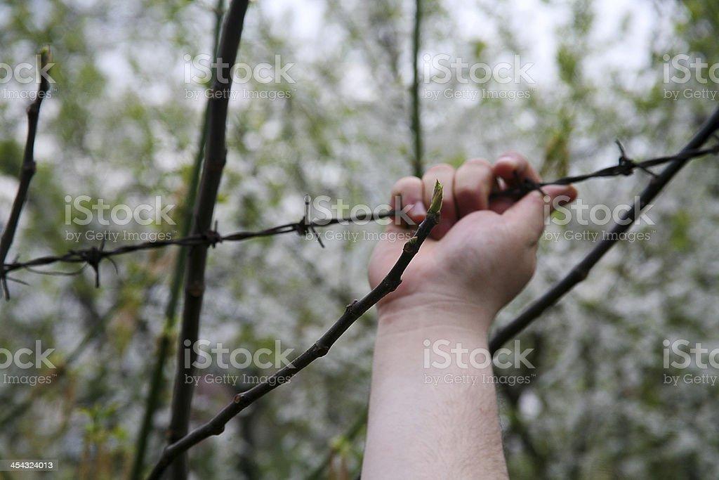 Man on Border royalty-free stock photo