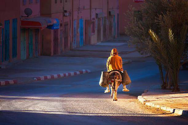 Man on donkey rides early morning. stock photo
