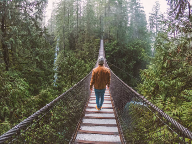 Man on suspension bridge crossing canyon in rainforest, Canada stock photo