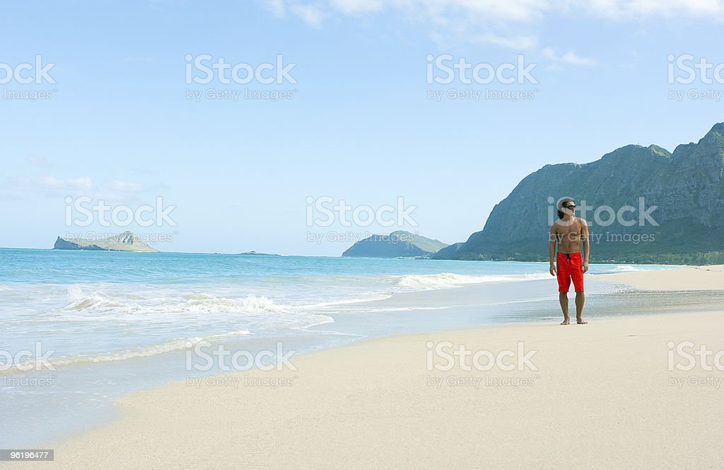 Man on the beach royalty-free stock photo