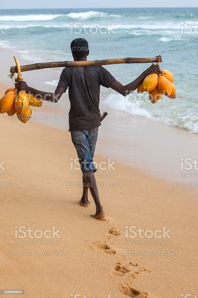 Man on the beach selling coconut water stock photo