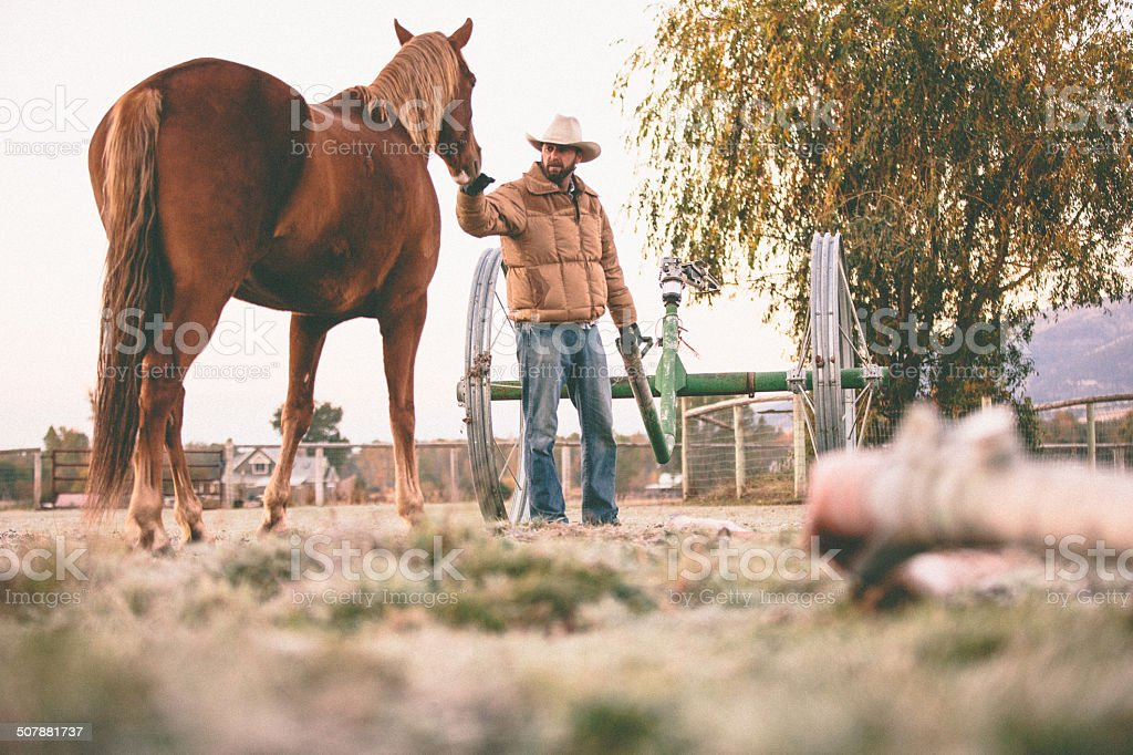 Man pets horse while pulling irrigation equipment through field royalty-free stock photo