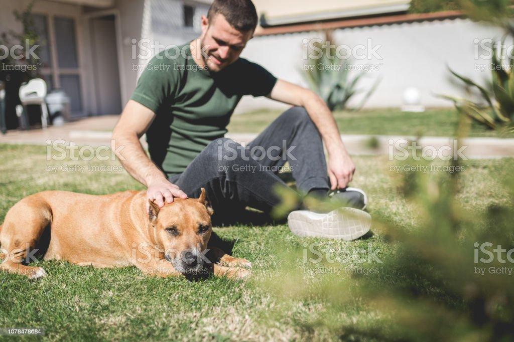 Man petting his elderly dog in the yard stock photo