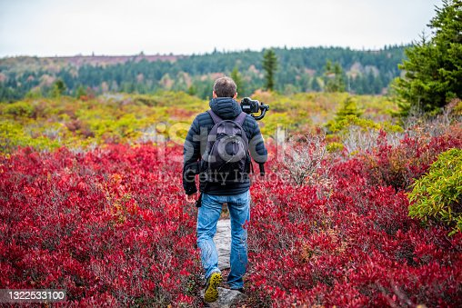 istock Man photographer with camera and tripod stabilizing gimbal hiking on autumn Bear Rocks trail in Dolly Sods, West Virginia filming video of red huckleberry bushes 1322533100