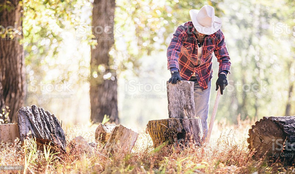 Man places firewood on stump before cutting it with axe stock photo