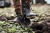istock Man planting a garden 943054738