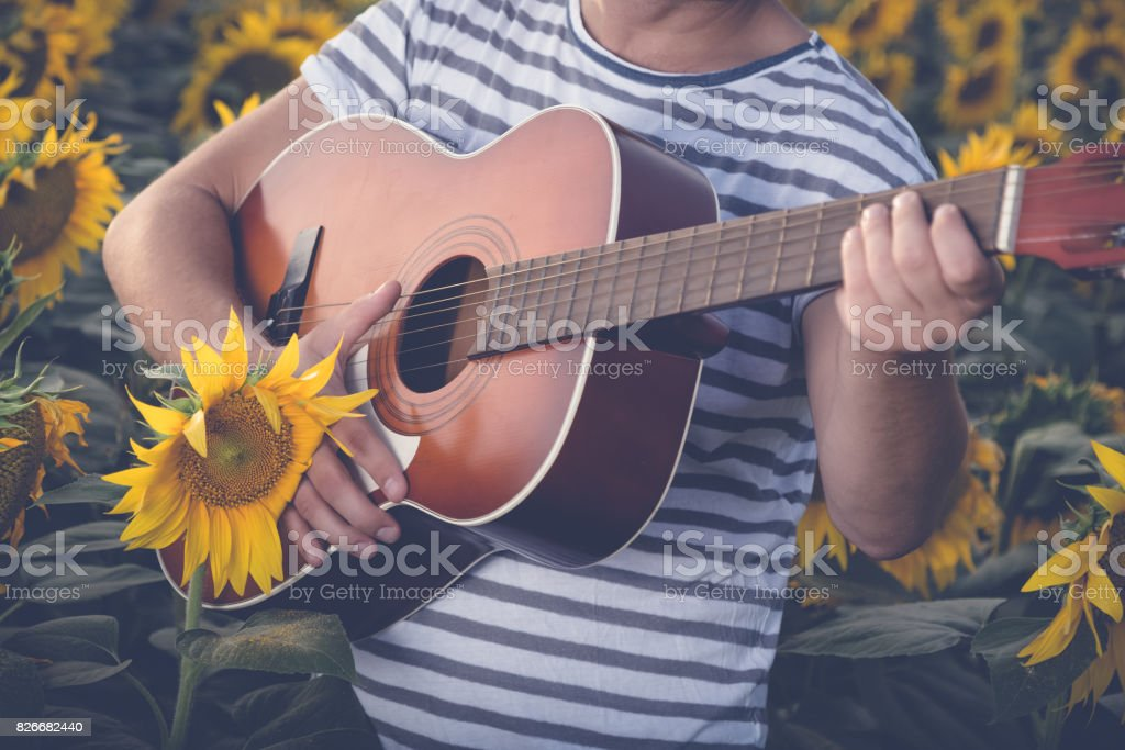 Man playing guitar in sunflower field stock photo