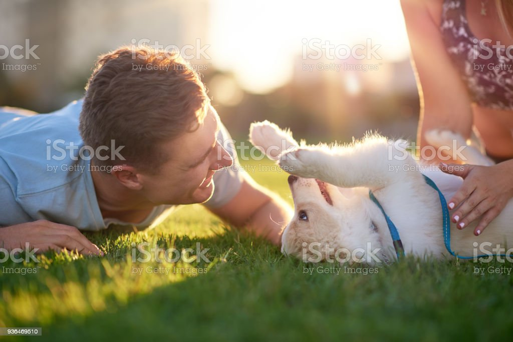 Man playing with cute puppy on grass with girlfriend in the park stock photo
