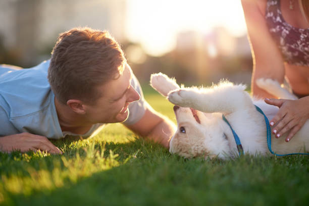 Man playing with cute puppy on grass with girlfriend in the park
