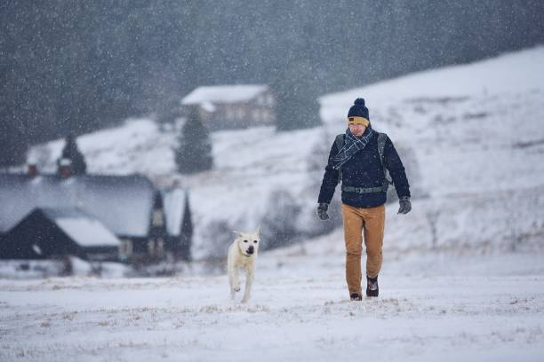 Man playing with dog in winter landscape picture id1081483894?b=1&k=6&m=1081483894&s=612x612&w=0&h=cs8nanydrppwhqph2n6fjp6kxzusydokrsj gosmdra=