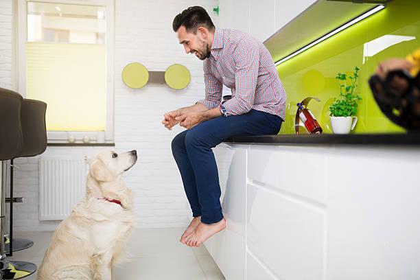 Hombre jugando con su perro usted - foto de stock