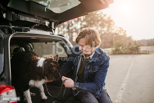 517930062 istock photo Man playing with his dog 540215956