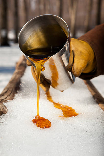 man pouring syrup from a tin cup into the snow - maple syrup stock photos and pictures