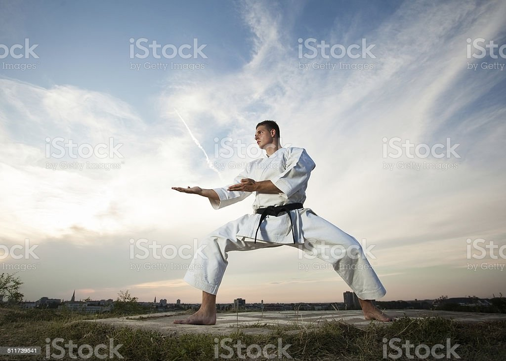 Man practicing martial arts outdoors stock photo