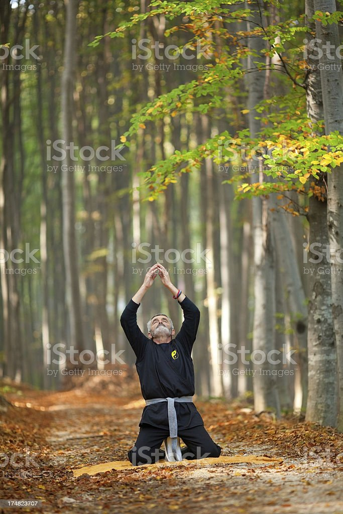 Man practicing yoga in the amazing forest at autumn royalty-free stock photo