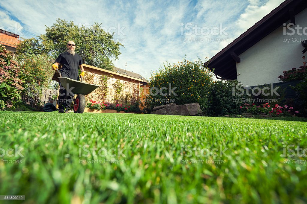 Man pushing wheelbarrow in  backyard at his home stock photo
