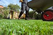 Man pushing wheelbarrow over grass