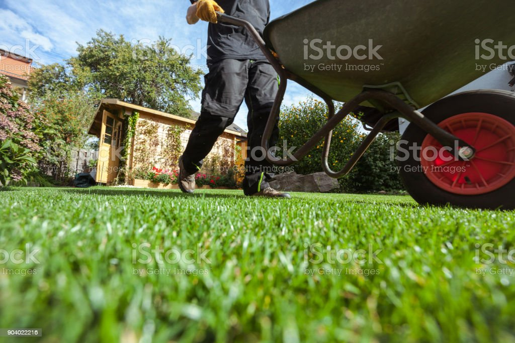 Man pushing wheelbarrow over grass stock photo