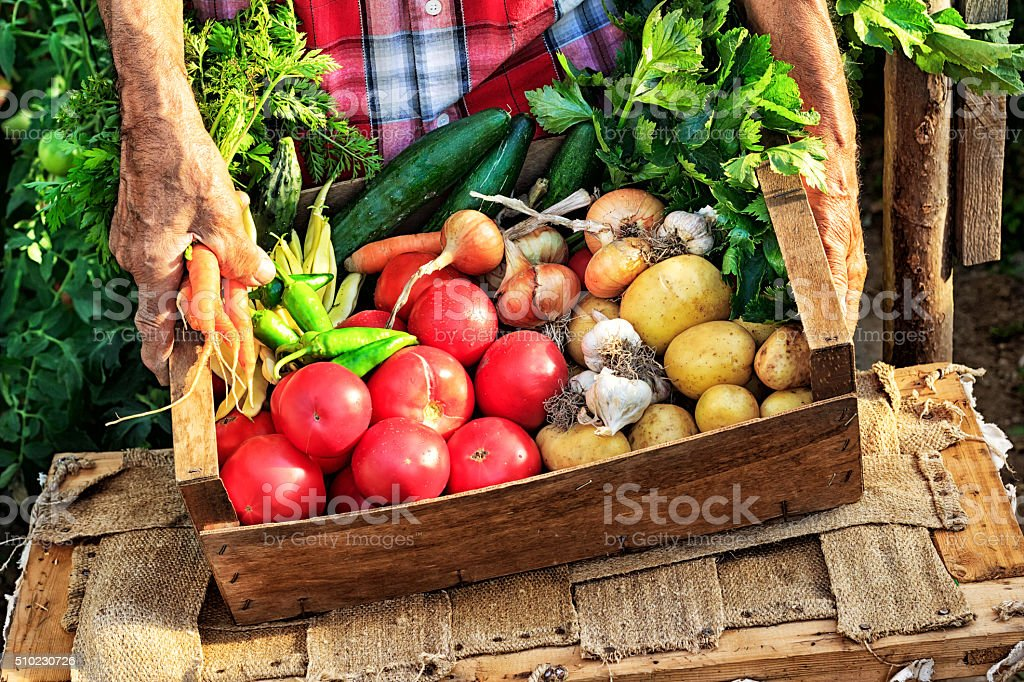 Man put crate with fresh vegetables on table stock photo