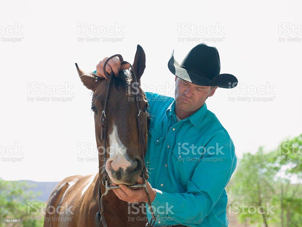 Man putting bridle on horse 免版稅 stock photo