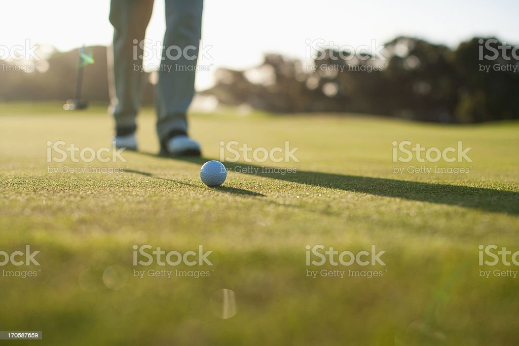 Man putting golf ball royalty-free stock photo