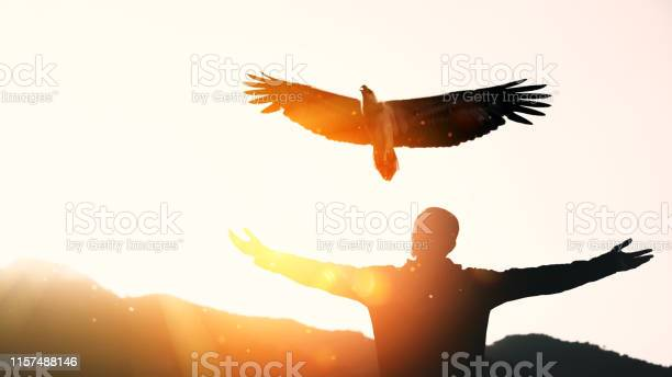 Man raise hand up on top of mountain and sunset sky star with eagle picture id1157488146?b=1&k=6&m=1157488146&s=612x612&h=byz1nxll33ipynrj4irb d9og sou ubvch0jnq9c6w=