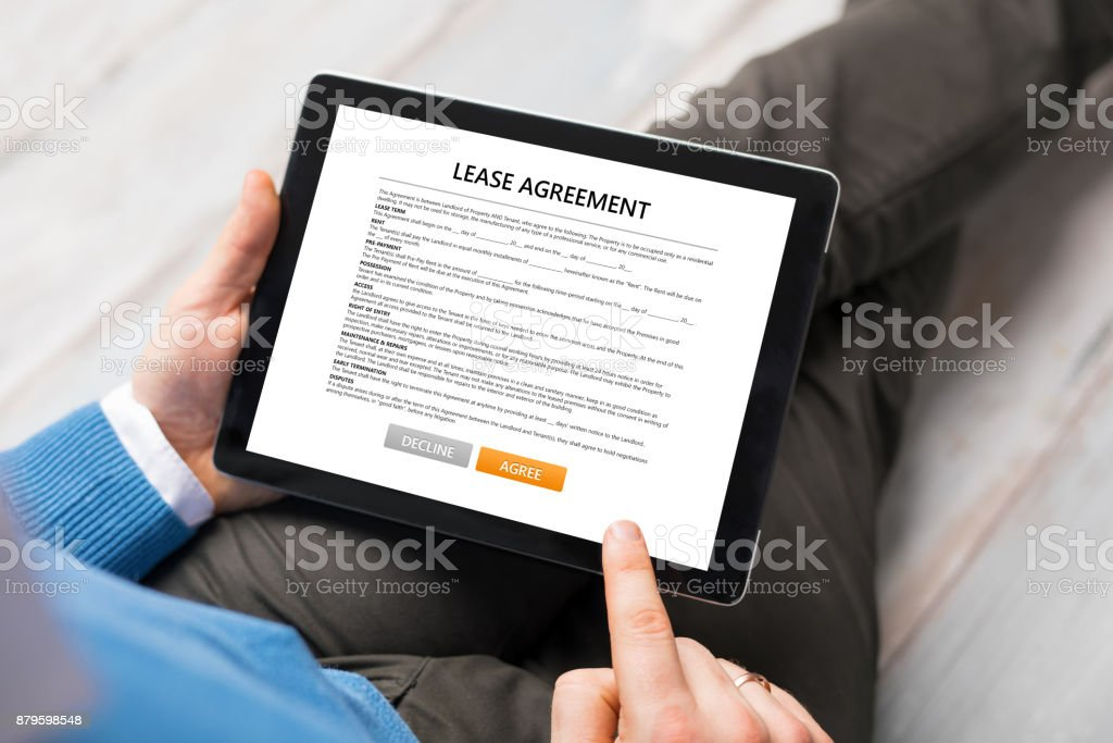 Man Reading Lease Agreement Stock Photo More Pictures Of Adult