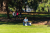 istock Man reading newspaper sitting on a lawn in Sydney Domain grounds 1209985659