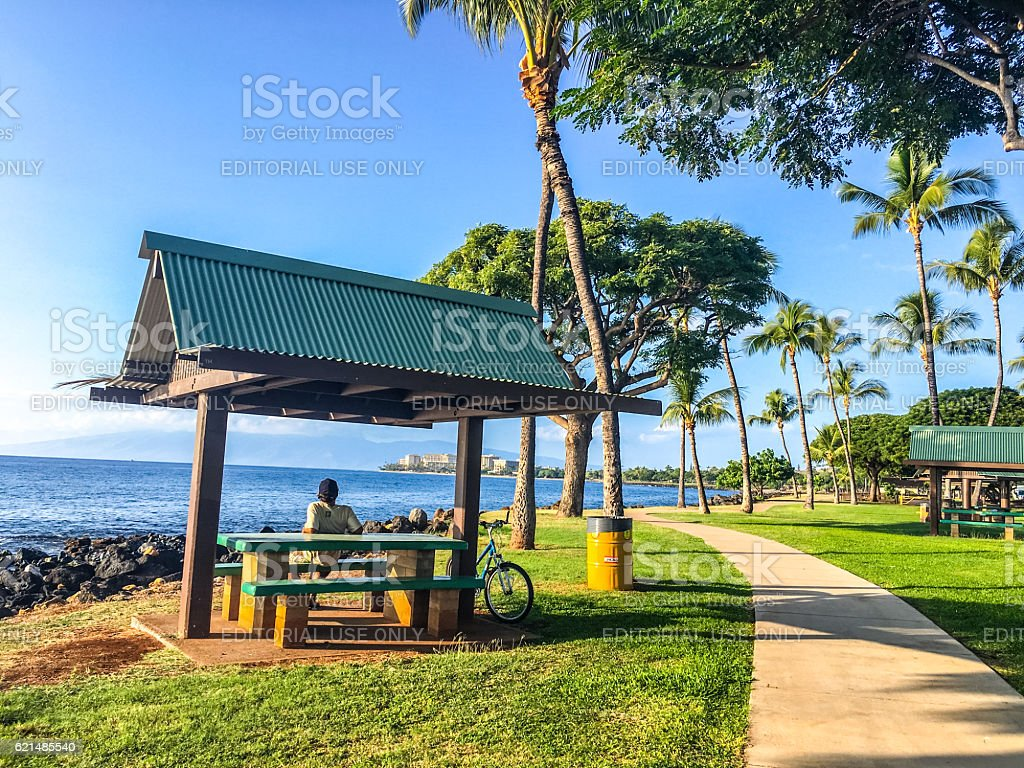 Man relaxing in beach park, Maui, Hawaii, USA foto stock royalty-free