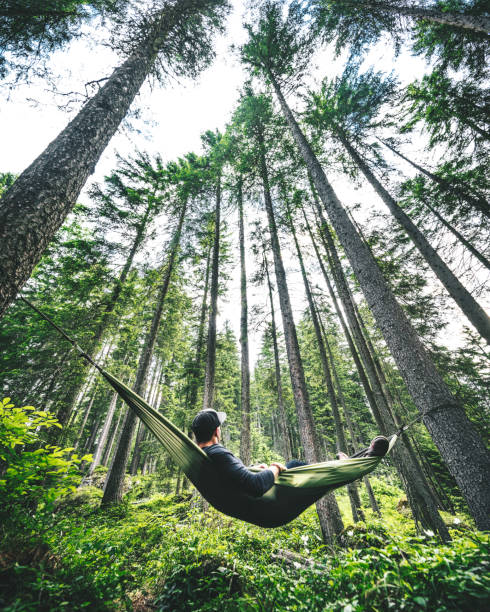 Man resting on the hammock picture id916804240?b=1&k=6&m=916804240&s=612x612&w=0&h=uemcse4mwamc2cuydxzsfs8wjqi38h19auk ml2js6q=