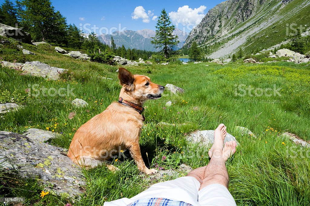 Man resting with his dog in the Italian Alps royalty-free stock photo