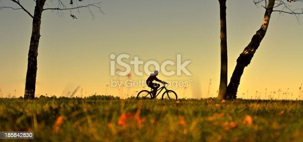969439086 istock photo Man rides a bicycle 185842830